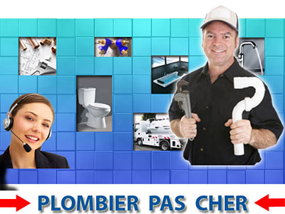Assainissement Neufmoutiers en Brie 77610